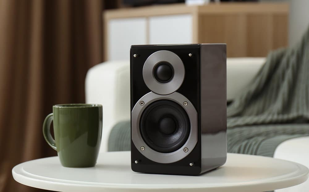 Shallow Mount Subwoofer for Indoors