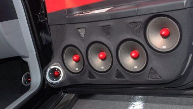 Can You Put Subwoofers in a Car Door?